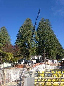 Photo Credit: Morgan B. | Our 700 Hiab in action on a nice sunny day in Vancouver.